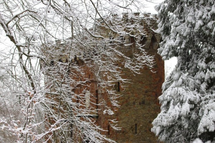 Sneeuw in Maria-ter-Heide (park De Mik).