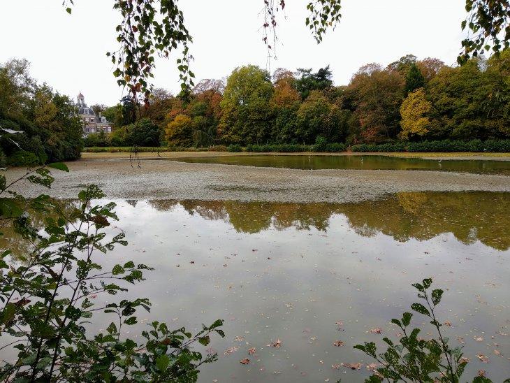 Waterstand park De Mik.