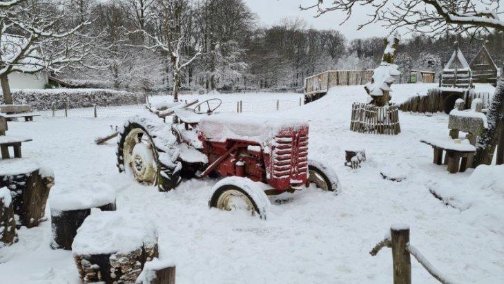 Sneeuw in Maria-ter-Heide (Kinderboerderij Mikerf).