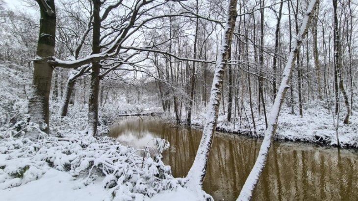 Sneeuw in Maria-ter-Heide (Hofgracht De Mik).