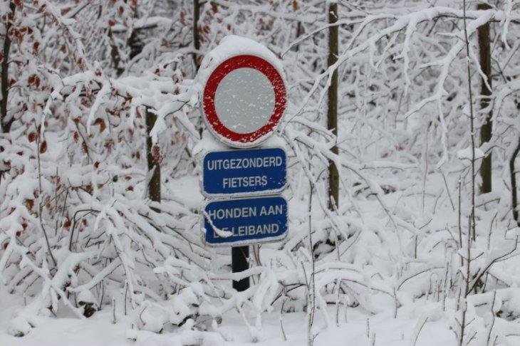 Sneeuw in Maria-ter-Heide 68