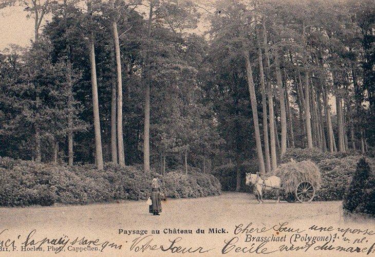 Landschap rond kasteel De Mick
