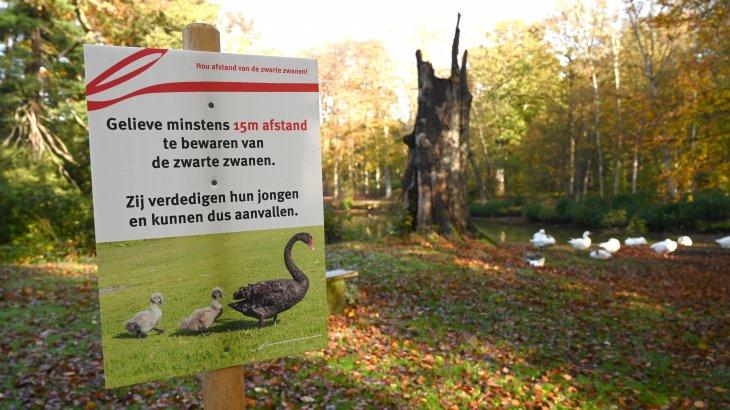Waarschuwingsbord voor de zwarte zwanen