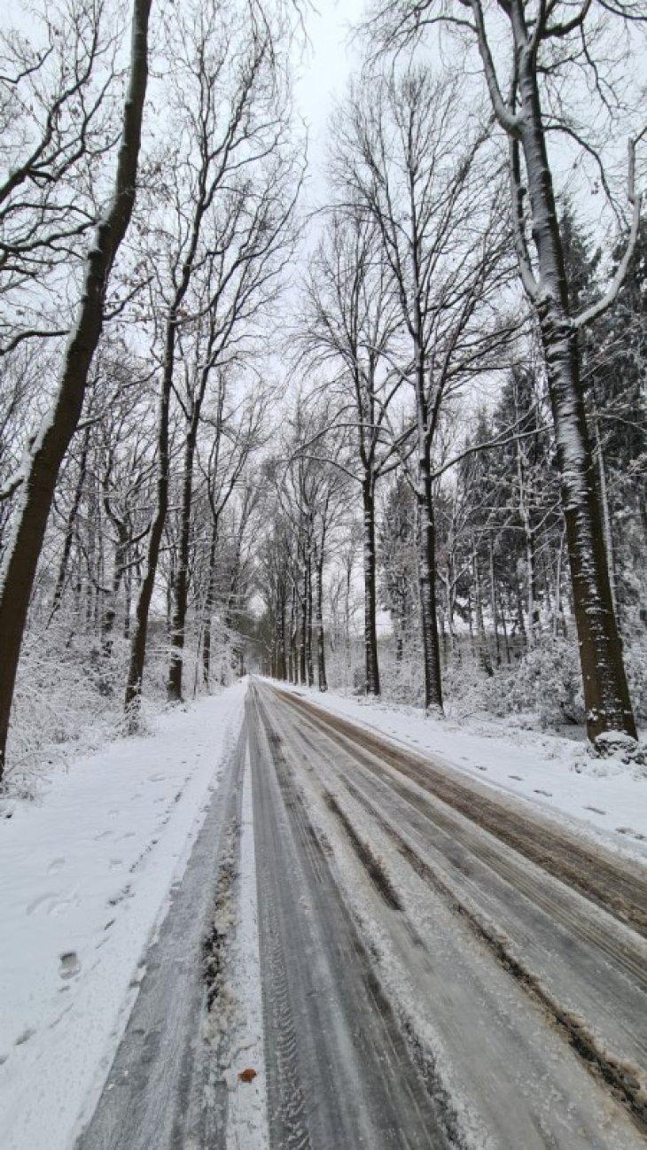 Sneeuw in Maria-ter-Heide (Kerkedreef).