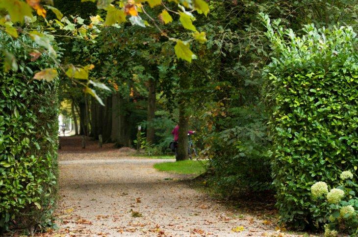 Herfst in Maria-ter-Heide 2019 (23)